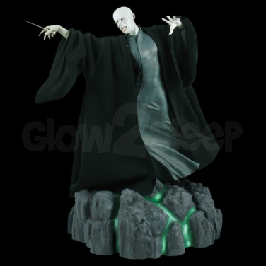 Lord Voldemort Room Guard