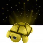 Dream Gazer Turtle